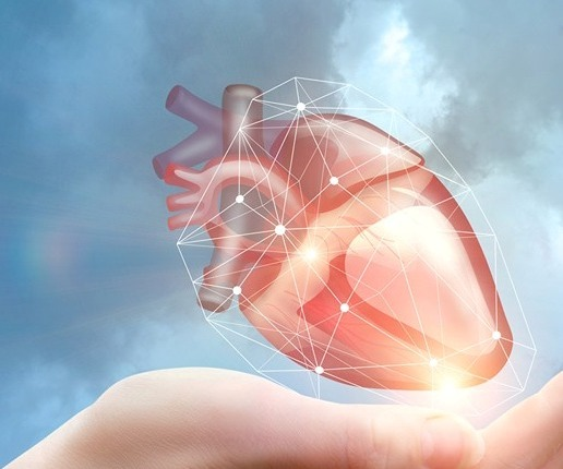 1חדש סגירת אוזנית הלב באמצעות התקן חדש