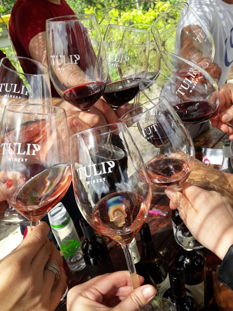 אחת ממסיבות היין בטוליפ צילום נטלי סאיגו